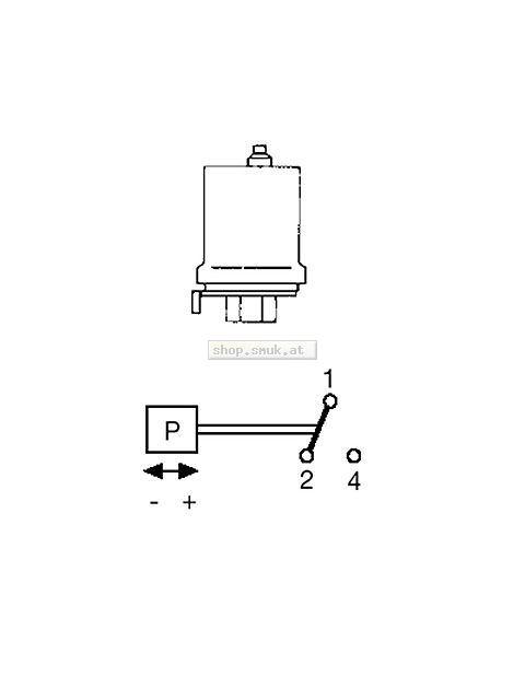 GRUNDFOS Zubehör für Unterwasserpumpen Druckschalter FF4-8 0,5-8bar 1polig (00ID8953)